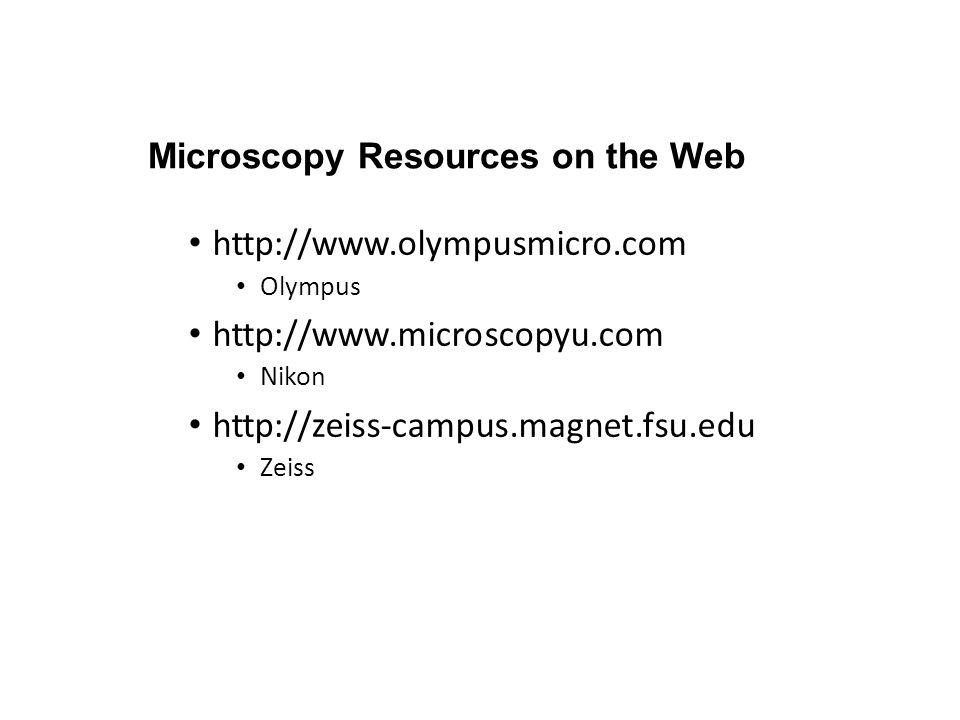 Microscopy Resources on the Web http://www.olympusmicro.com Olympus http://www.microscopyu.com Nikon http://zeiss-campus.magnet.fsu.edu Zeiss
