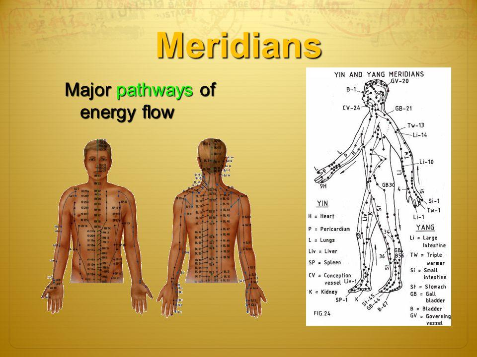 Meridians Major pathways of energy flow energy flow