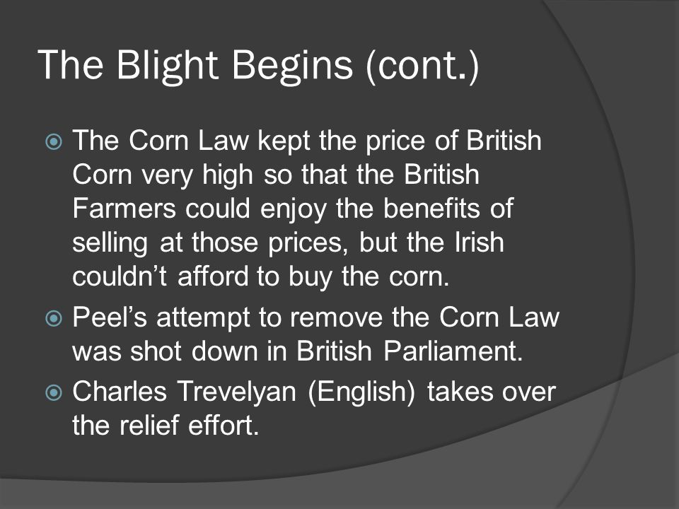 The Blight Begins (cont.)  The British continue to IMPORT wheat, barley, oats and oatmeal from Irish farmers.