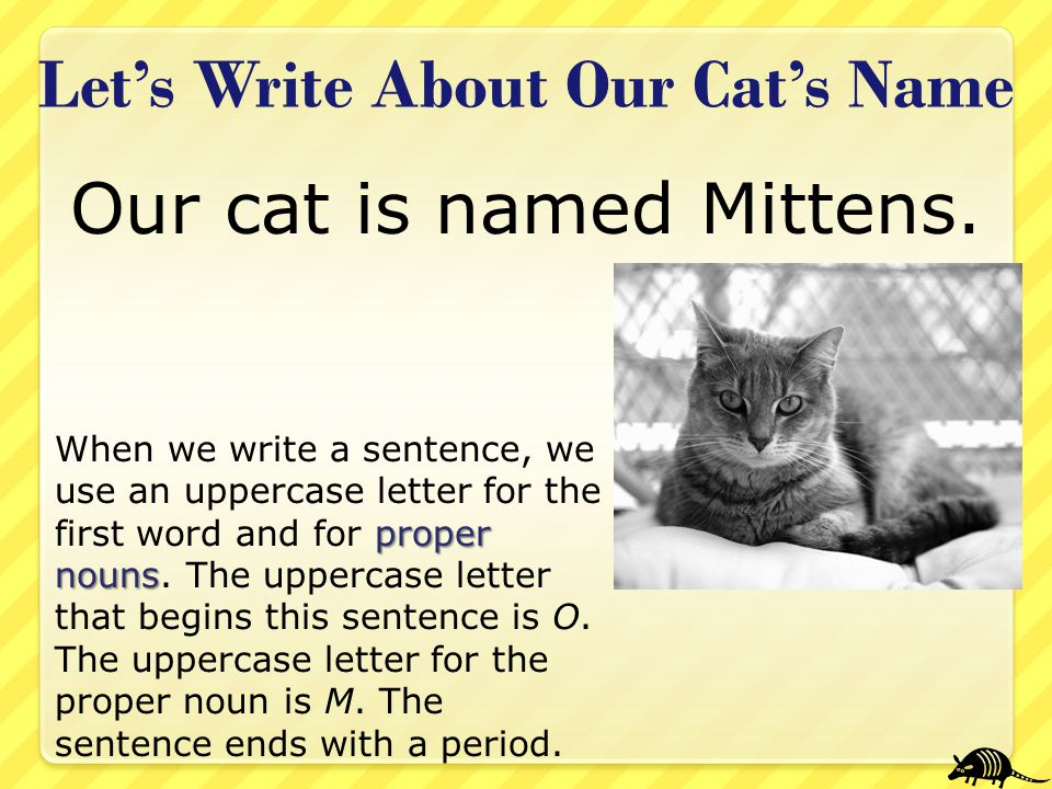 Let's Write About Our Cat's Name proper nouns When we write a sentence, we use an uppercase letter for the first word and for proper nouns. The upperc