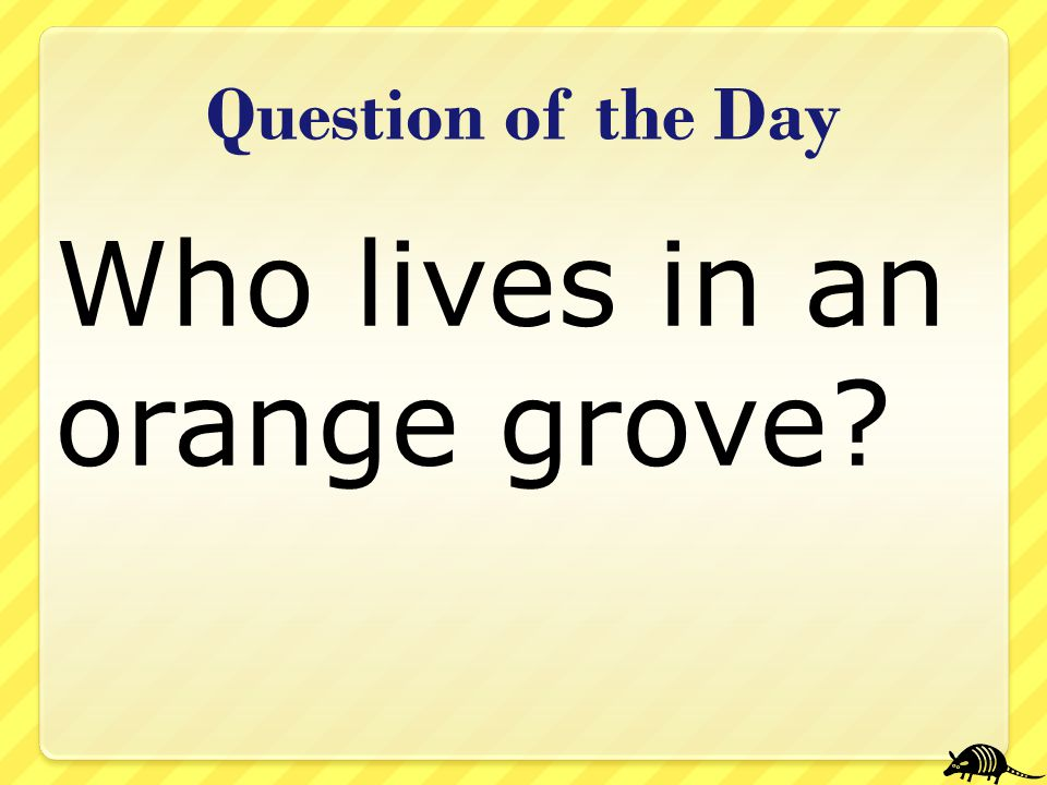 Who lives in an orange grove? Question of the Day