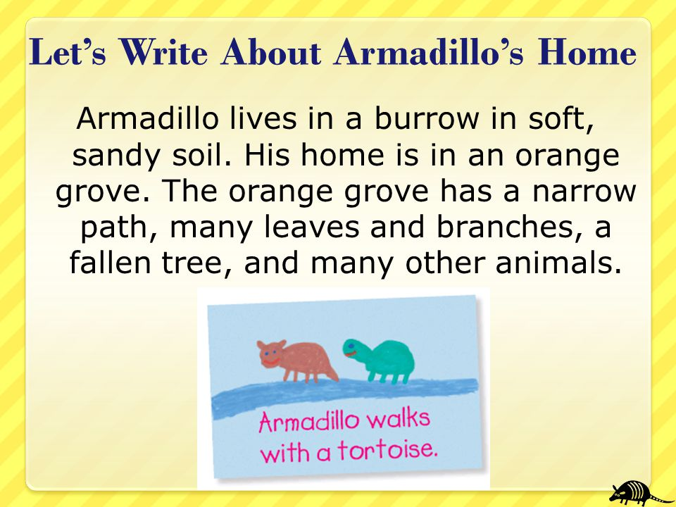 Let's Write About Armadillo's Home Armadillo lives in a burrow in soft, sandy soil. His home is in an orange grove. The orange grove has a narrow path