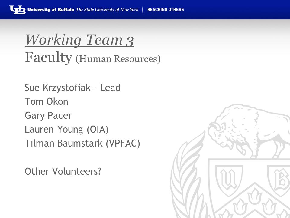 Working Team 3 Faculty (Human Resources) Sue Krzystofiak – Lead Tom Okon Gary Pacer Lauren Young (OIA) Tilman Baumstark (VPFAC) Other Volunteers?