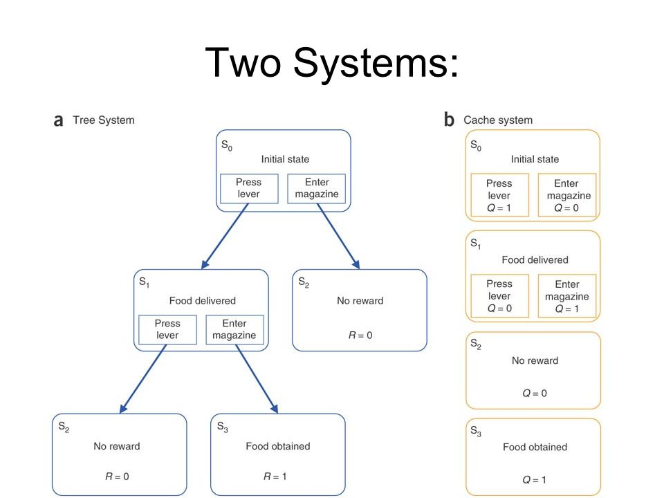 Two Systems: