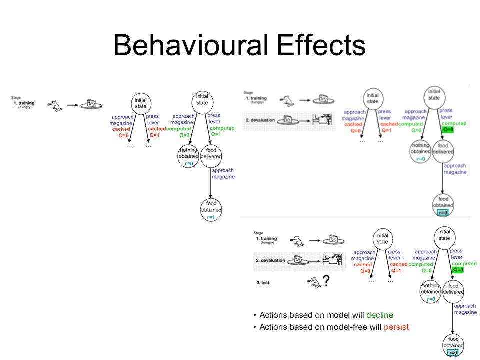 Behavioural Effects