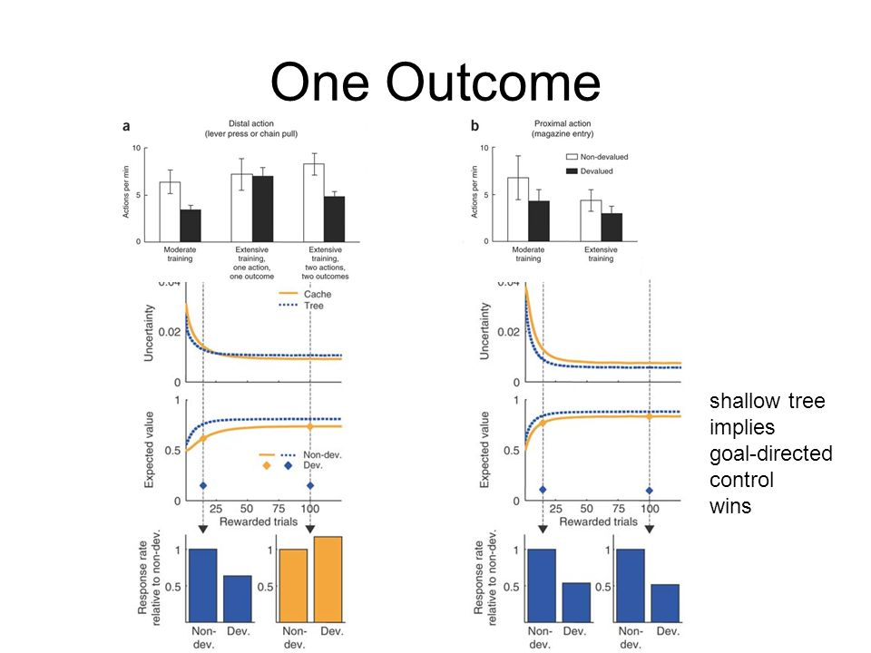 One Outcome shallow tree implies goal-directed control wins