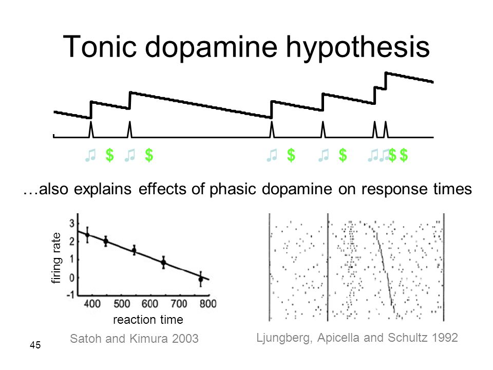 45 Tonic dopamine hypothesis Satoh and Kimura 2003 Ljungberg, Apicella and Schultz 1992 reaction time firing rate …also explains effects of phasic dop