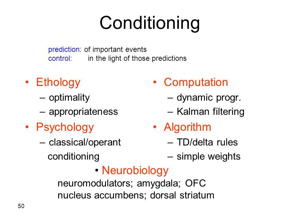 50 Conditioning Ethology –optimality –appropriateness Psychology –classical/operant conditioning Computation –dynamic progr. –Kalman filtering Algorit