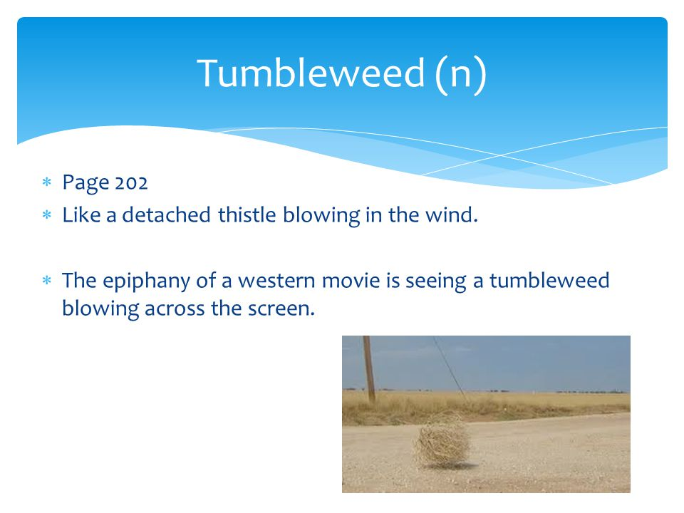  Page 202  Like a detached thistle blowing in the wind.  The epiphany of a western movie is seeing a tumbleweed blowing across the screen. Tumblewe