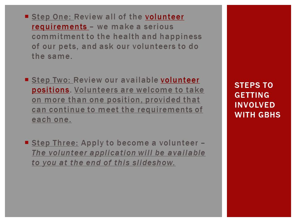  Step Four: Eligible applicants will be contacted by a GBHS Volunteer Department representative to determine where they will best fit within the organization.
