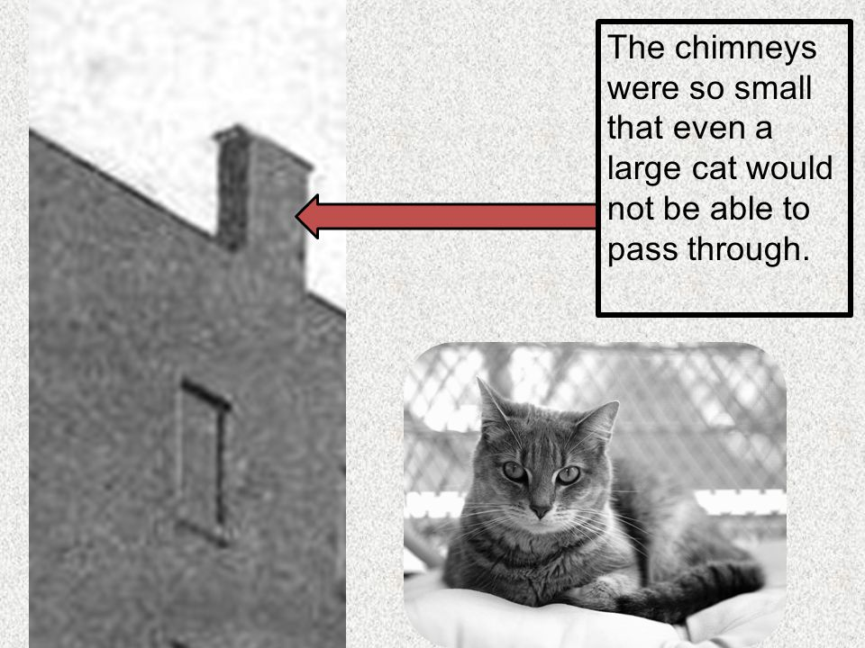 The chimneys were so small that even a large cat would not be able to pass through.