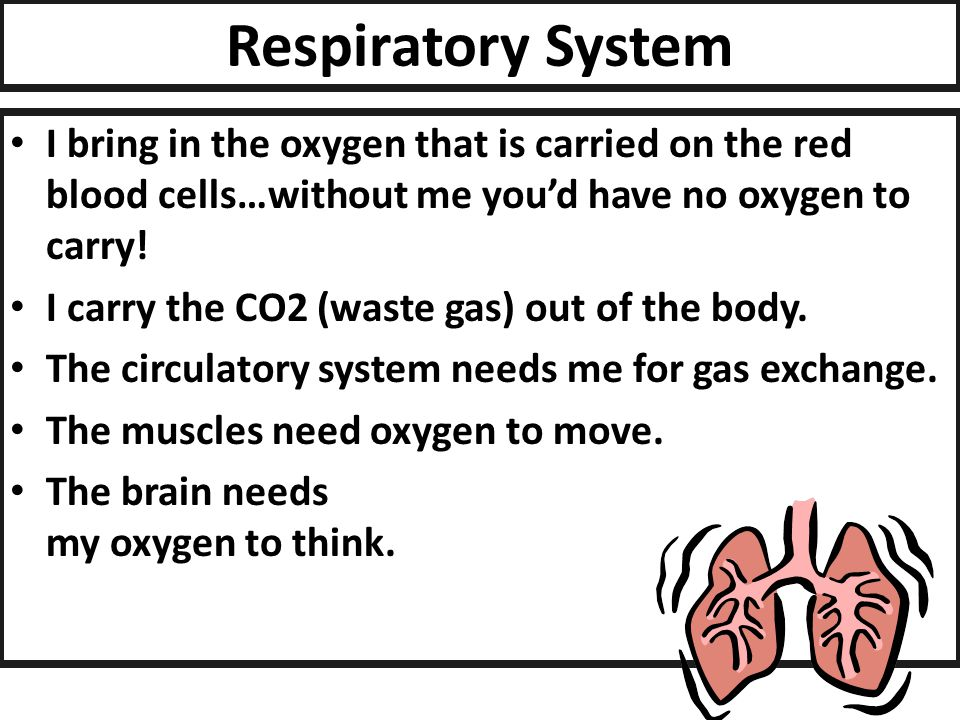 Circulatory System I carry oxygen and nutrients to every cell in the body.