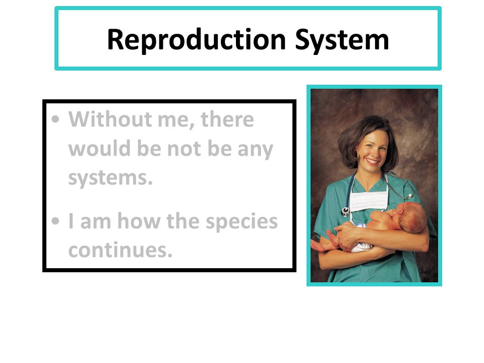 Reproduction System Without me, there would be not be any systems. I am how the species continues.