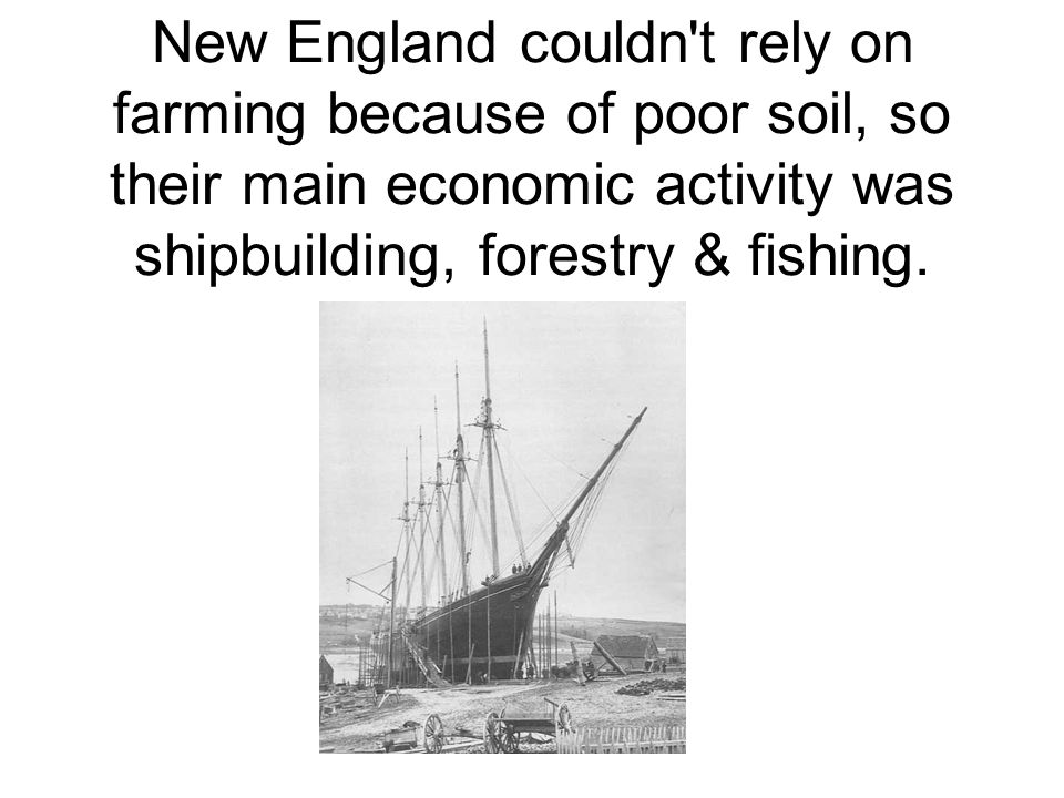New England couldn't rely on farming because of poor soil, so their main economic activity was shipbuilding, forestry & fishing.