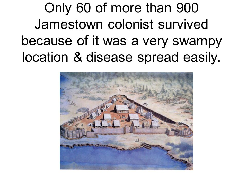 Only 60 of more than 900 Jamestown colonist survived because of it was a very swampy location & disease spread easily.