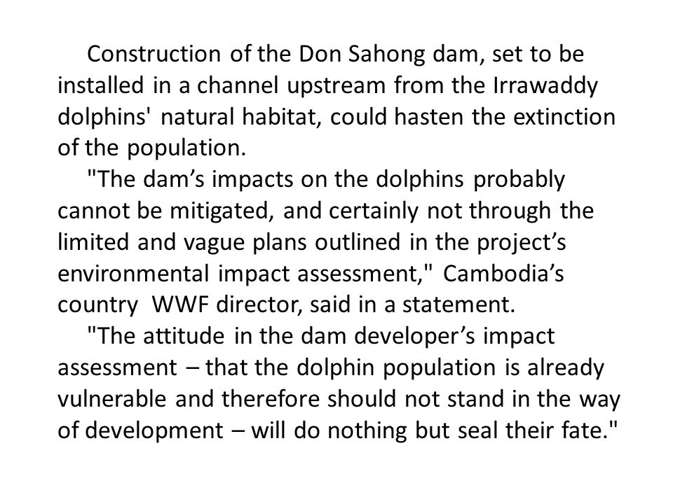Construction of the Don Sahong dam, set to be installed in a channel upstream from the Irrawaddy dolphins natural habitat, could hasten the extinction of the population.