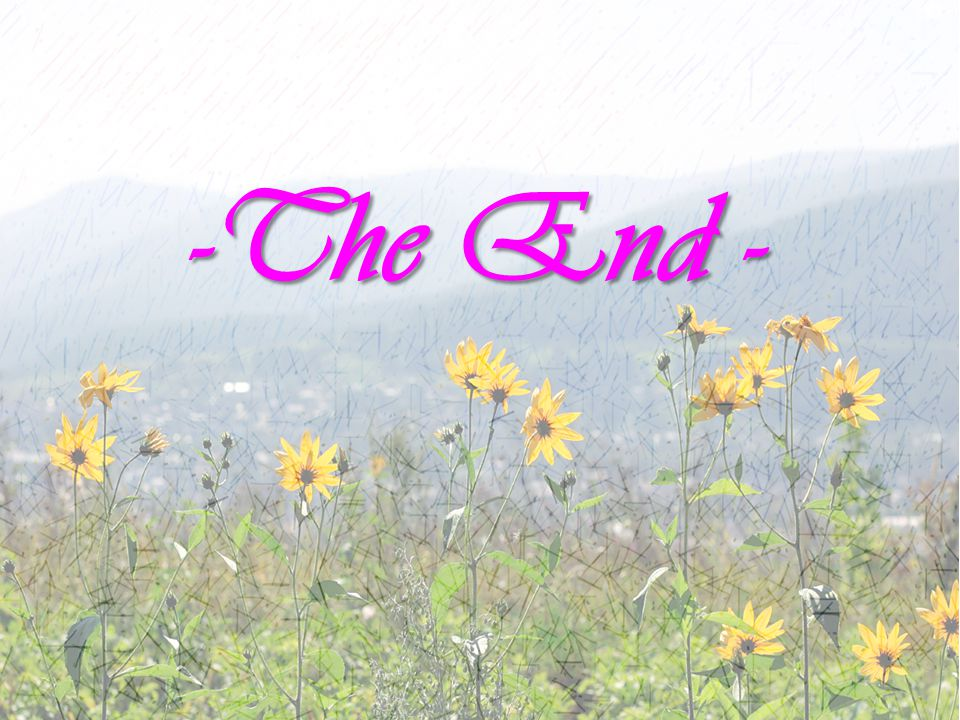 -The End -
