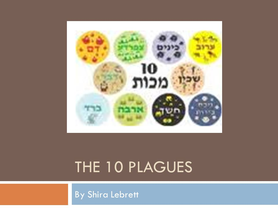 THE 10 PLAGUES By Shira Lebrett