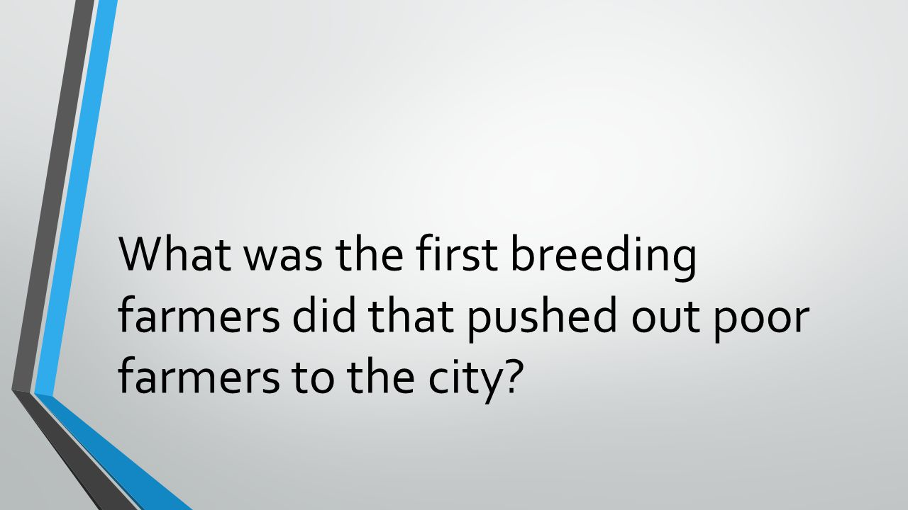 What was the first breeding farmers did that pushed out poor farmers to the city?