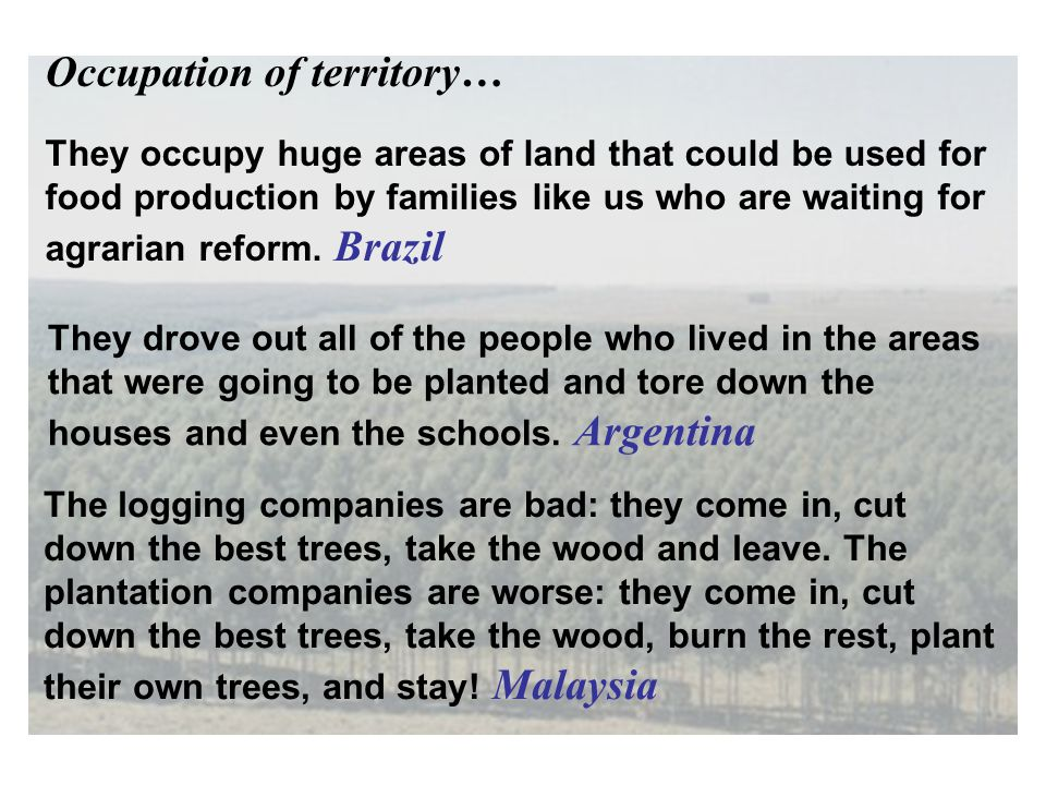 They occupy huge areas of land that could be used for food production by families like us who are waiting for agrarian reform. Brazil The logging comp