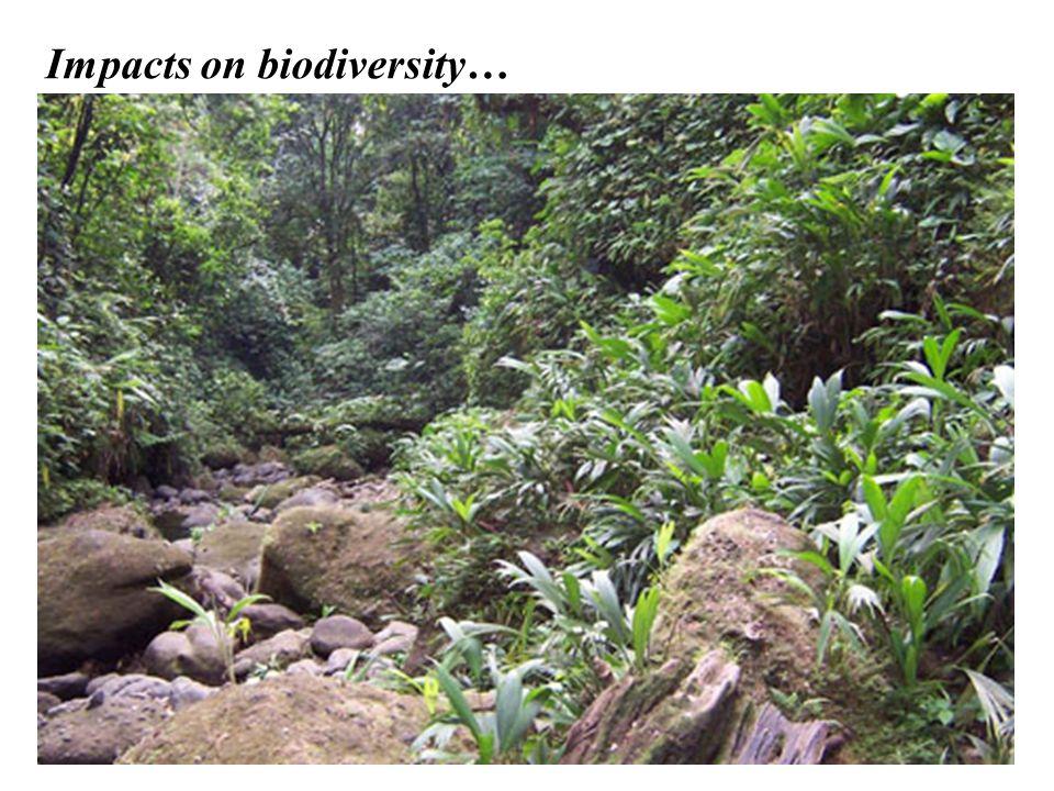Impacts on biodiversity…