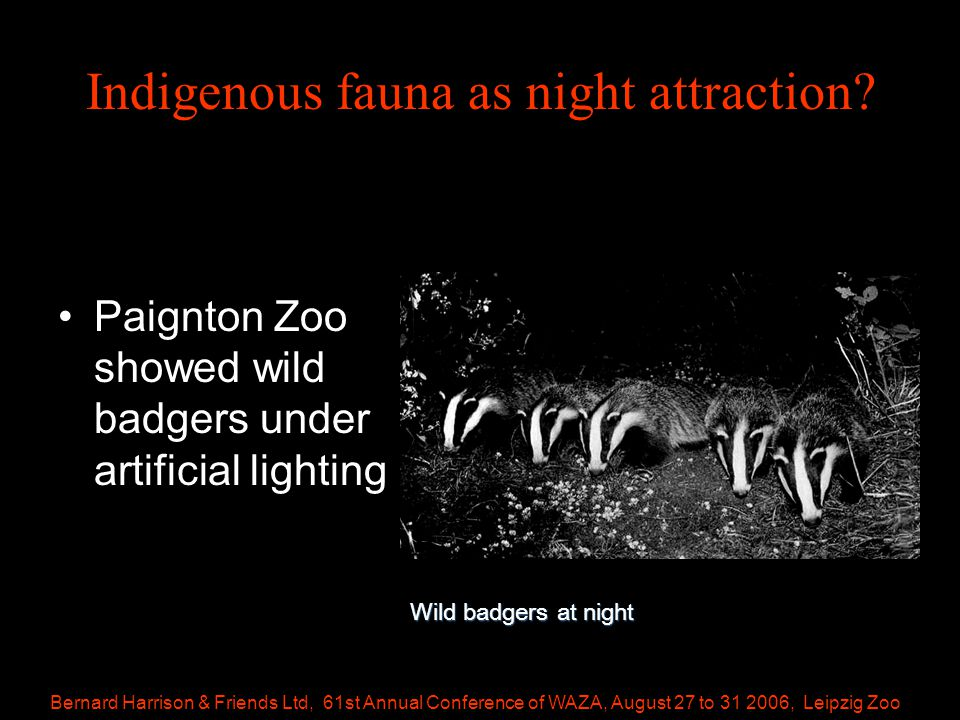 Bernard Harrison & Friends Ltd, 61st Annual Conference of WAZA, August 27 to 31 2006, Leipzig Zoo Indigenous fauna as night attraction.