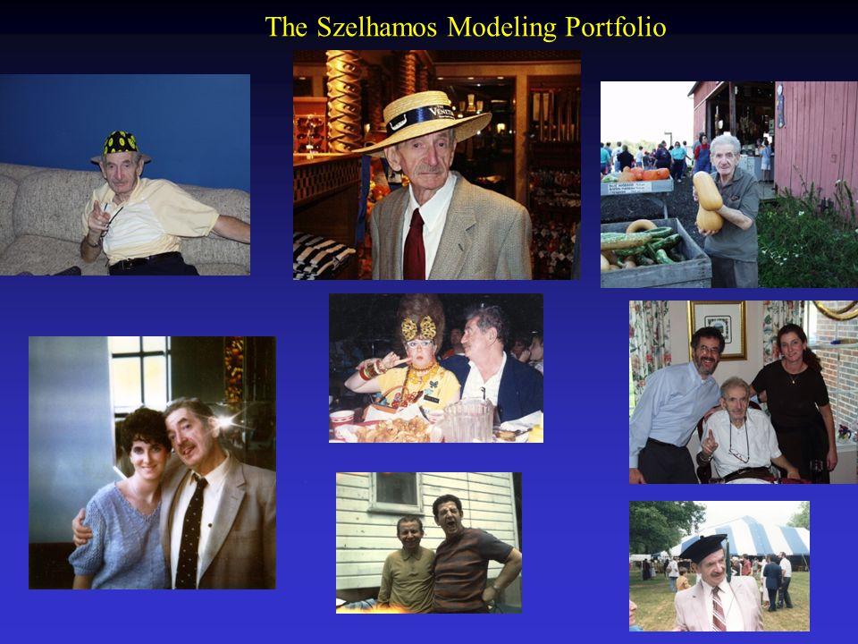 The Szelhamos Modeling Portfolio.