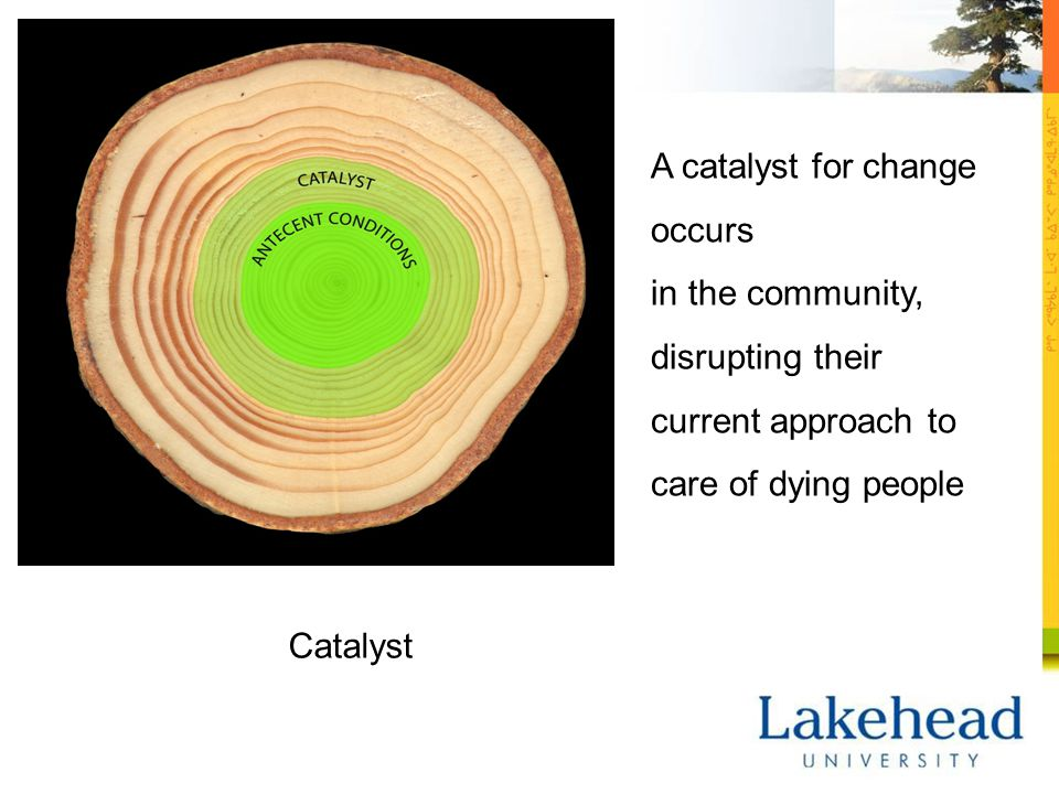 Catalyst A catalyst for change occurs in the community, disrupting their current approach to care of dying people