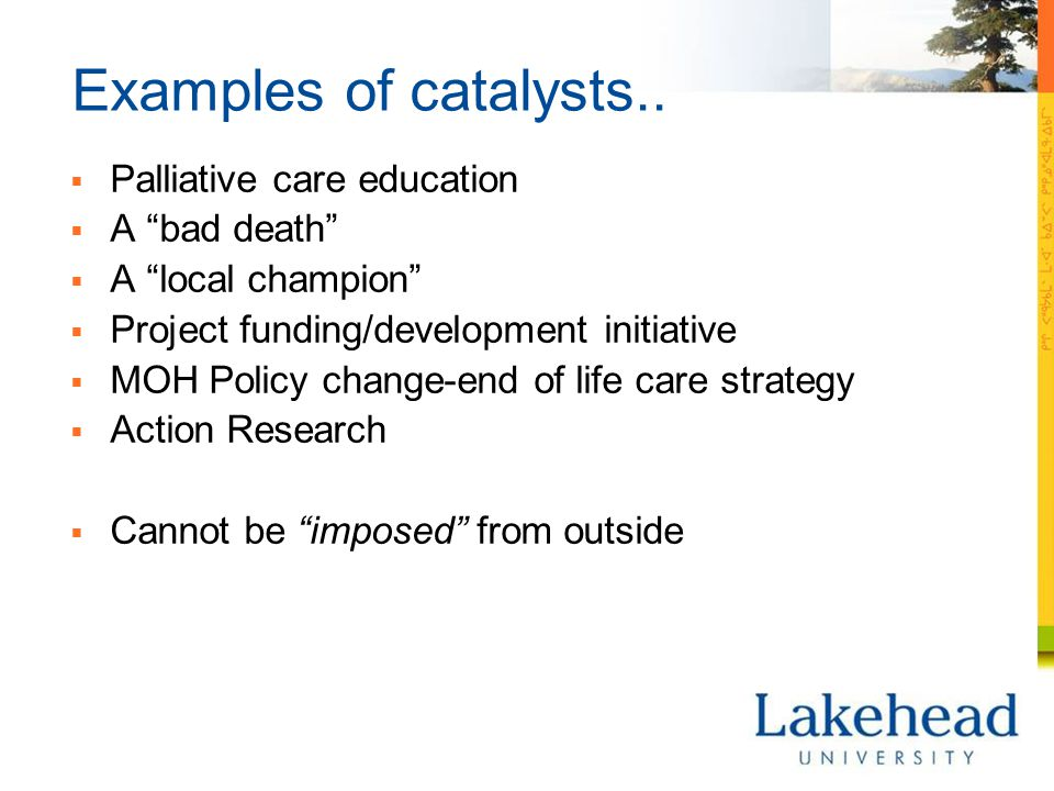 Examples of catalysts..