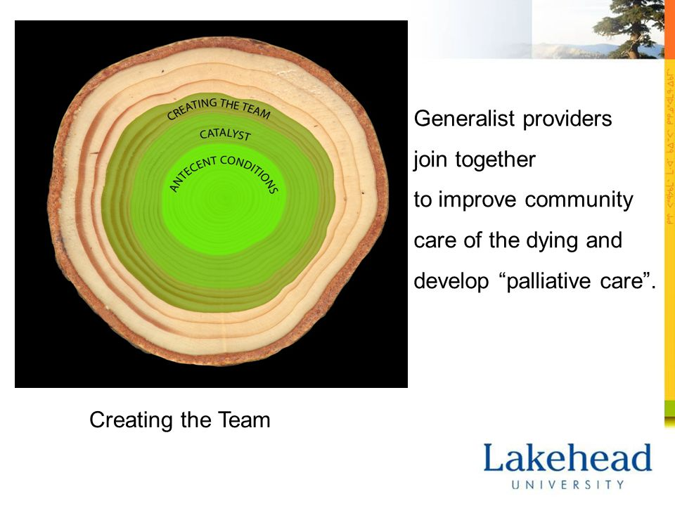 Creating the Team Generalist providers join together to improve community care of the dying and develop palliative care .