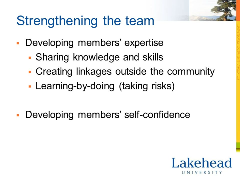 Strengthening the team  Developing members' expertise  Sharing knowledge and skills  Creating linkages outside the community  Learning-by-doing (t