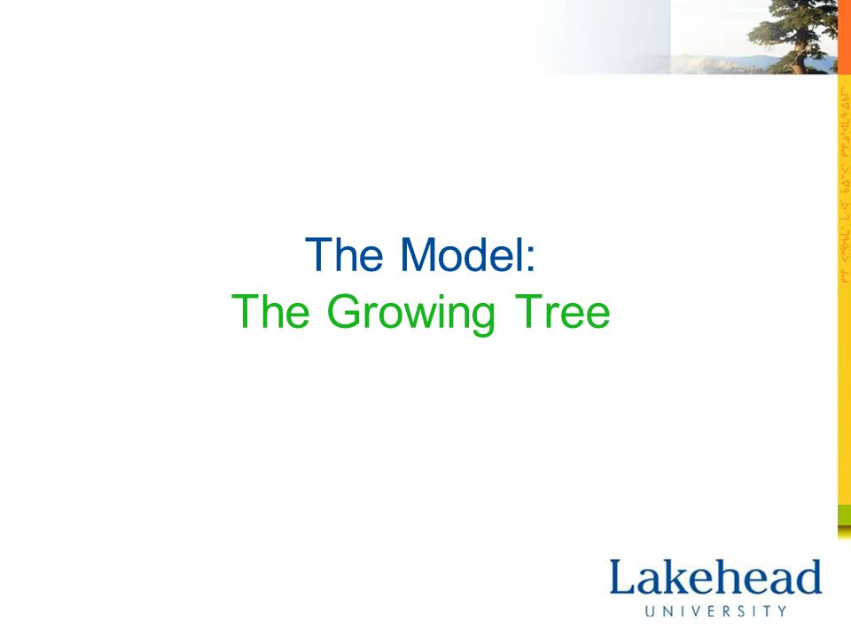 The Model: The Growing Tree