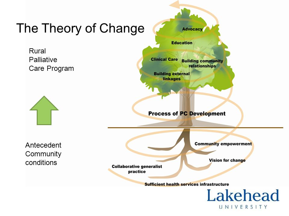 Engaging the community  Changing clinical practices  Developing/implementing tools for care (e.g.