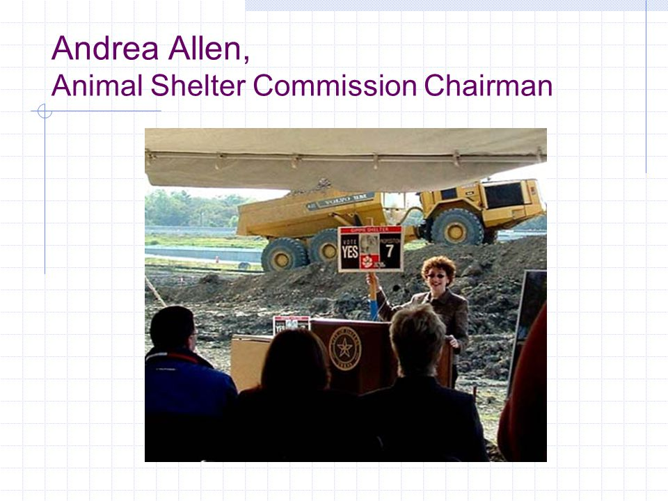 Andrea Allen, Animal Shelter Commission Chairman