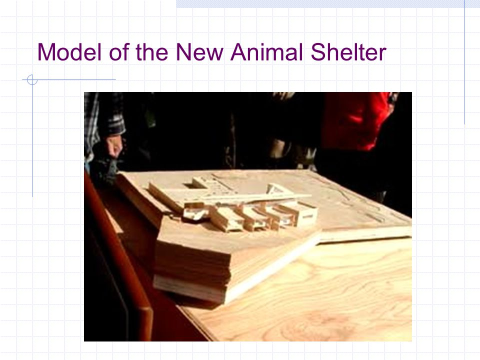 Model of the New Animal Shelter
