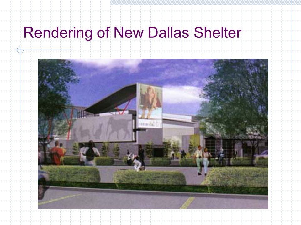 Rendering of New Dallas Shelter