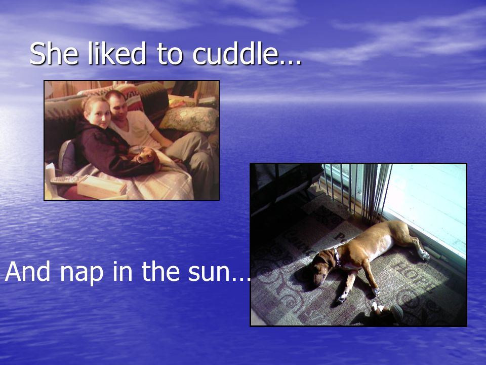 She liked to cuddle… And nap in the sun…