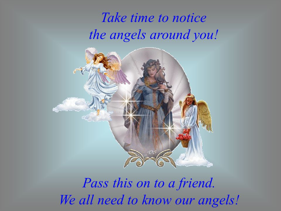 Take time to notice the angels around you! Pass this on to a friend. We all need to know our angels!