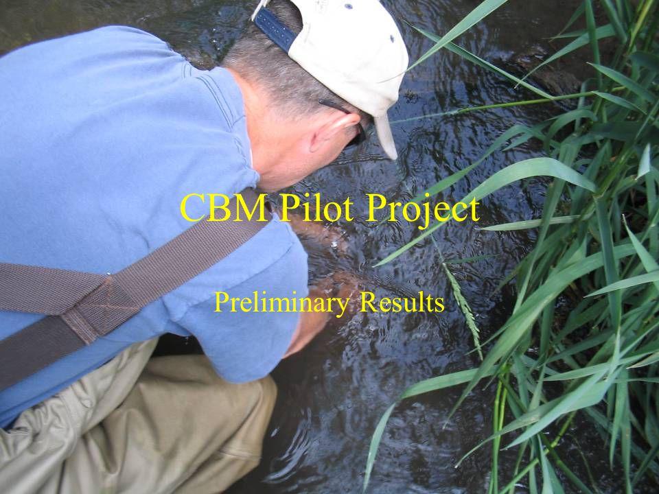 CBM Pilot Project Preliminary Results