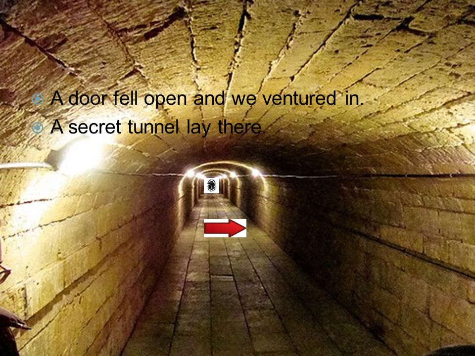  A door fell open and we ventured in.  A secret tunnel lay there.