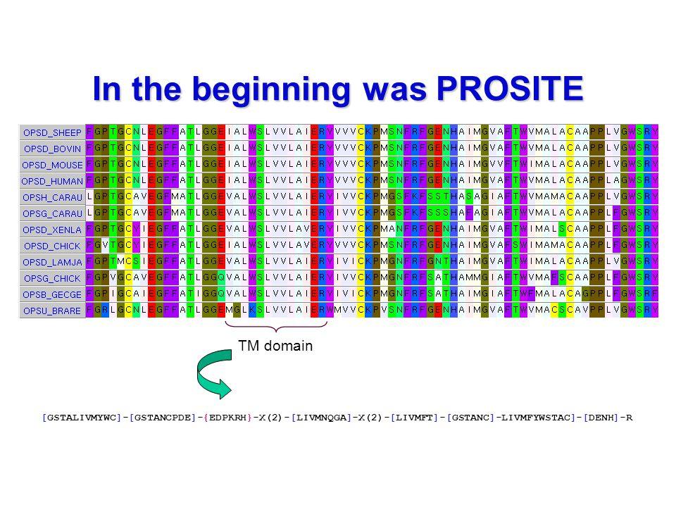 In the beginning was PROSITE [GSTALIVMYWC]-[GSTANCPDE]-{EDPKRH}-X(2)-[LIVMNQGA]-X(2)-[LIVMFT]-[GSTANC]-LIVMFYWSTAC]-[DENH]-R TM domain