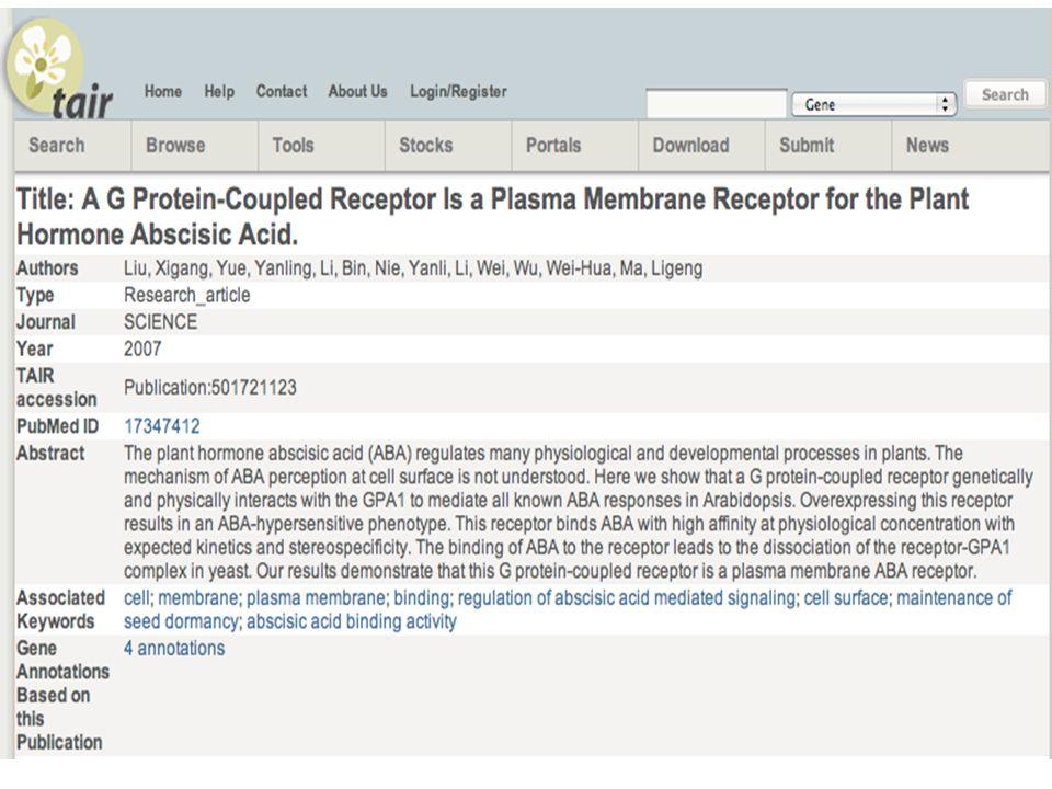 GPCR? Pfam Lanthionine synthetase C-like protein PROSITE (profile) no match PROSITE (regex) no match PRINTS no match ClustalW – sequences too divergen