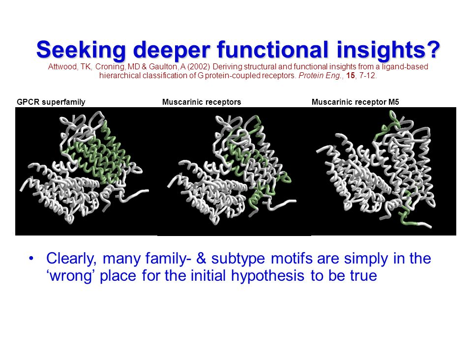 Seeking deeper functional insights? Attwood, TK, Croning, MD & Gaulton, A (2002) Deriving structural and functional insights from a ligand-based hiera