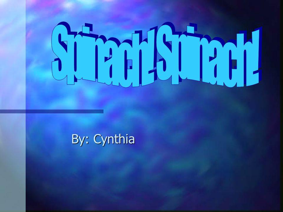 By: Cynthia