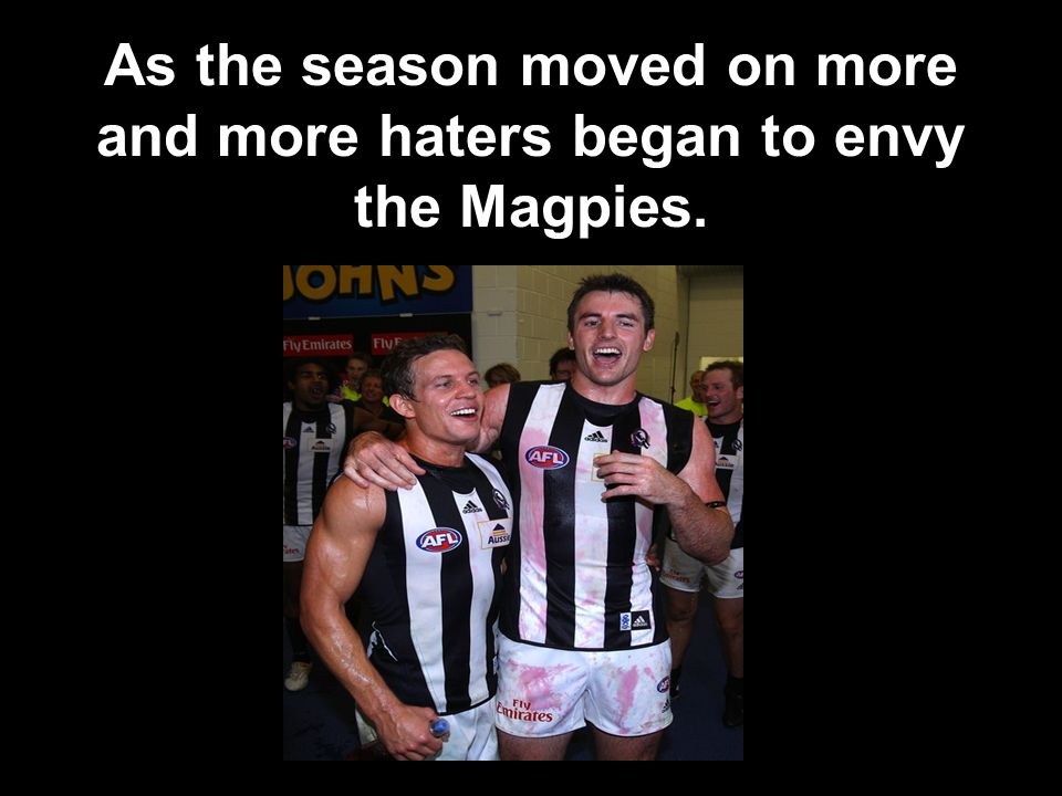 As the season moved on more and more haters began to envy the Magpies.