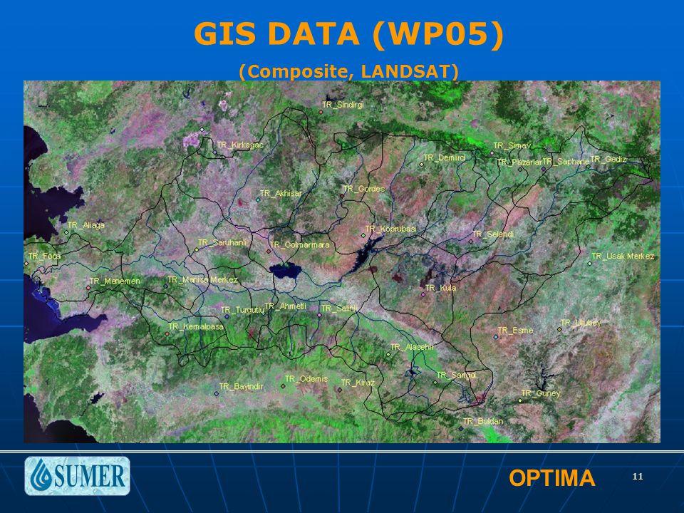 OPTIMA 11 GIS DATA (WP05) (Composite, LANDSAT)