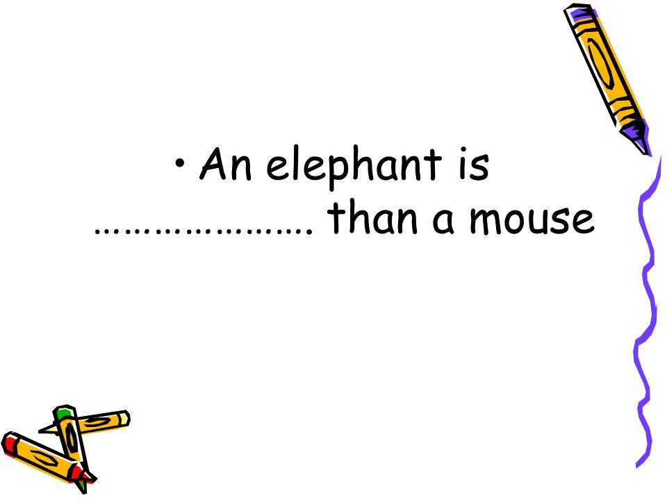 Small / Big An Elephant A Bear A Mouse