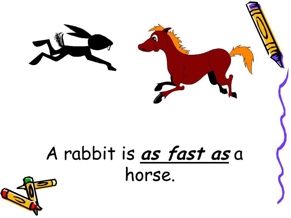 Fast Rabbit Horse