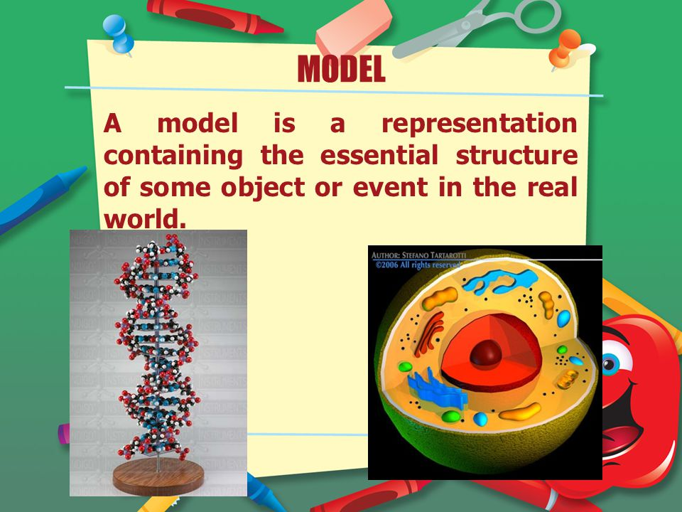 MODEL A model is a representation containing the essential structure of some object or event in the real world.