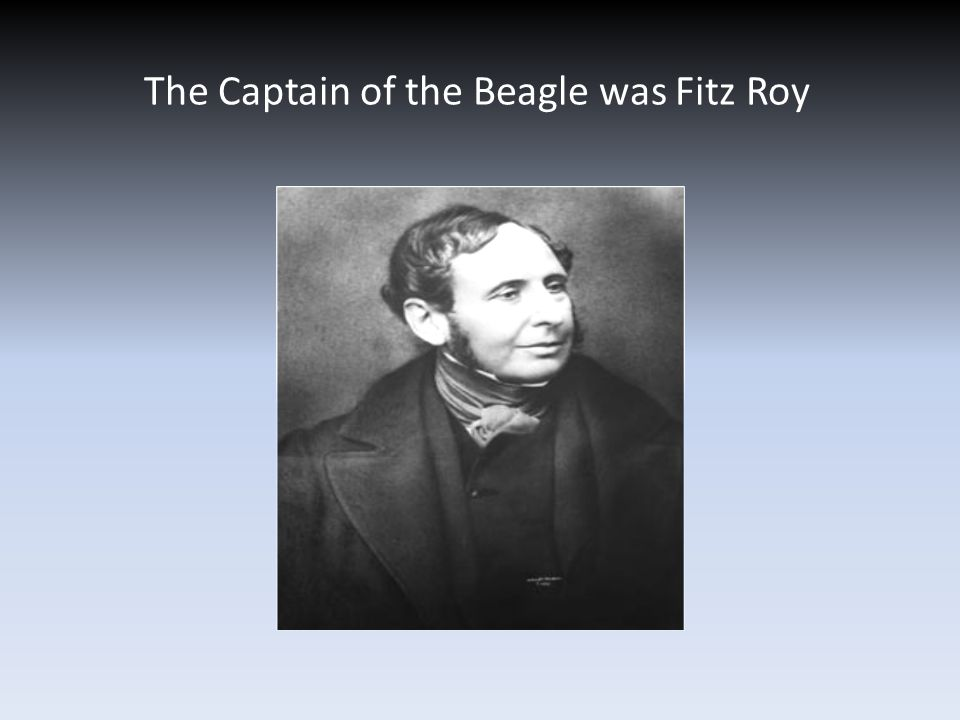 The Captain of the Beagle was Fitz Roy